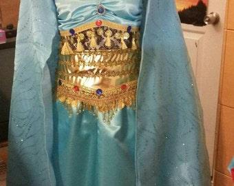 Jasmine Princess Adult Women Princess Cosplay Costume Dress
