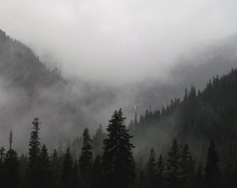 Wrapped Canvas or Print, Treescape, Mountains, Winter, Fog, PNW, wall hanging, home decor,  Nature Photography by RDelean