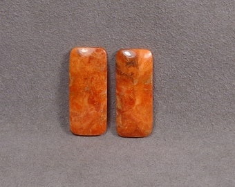 Fossilized APPLE CORAL Cabochons Matched Pair Set of 2