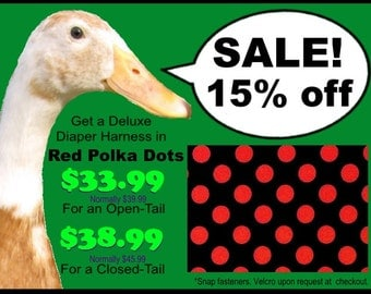 """SALE! 15% off a Deluxe """"Snap"""" Diaper Harness for Pet Fowl Made-to-Order in Red Polka Dots"""