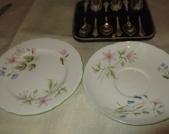 Shelley Wild Anemone pattern 13977  Saucer & Side Plate