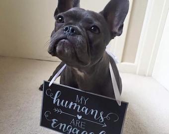 Pet Chalkboard Sign.