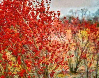 Red Berries / Trees Rural Farm Wall Art Branches Digital Paint Print