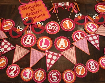 Elmo Birthday, Elmo Party, Elmo's World Birthday, Sesame Street Pary, Elmo Birthday Party, Pink Elmo Party