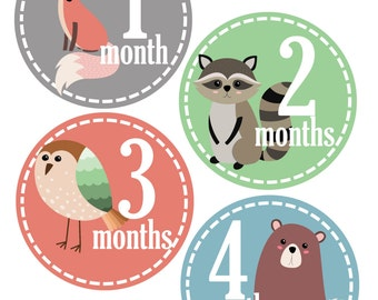 Woodland Monthly Baby Stickers, Set of 12 Month Stickers