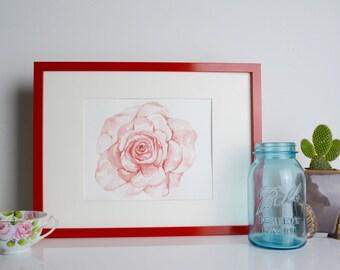 Pink Rose, original watercolor