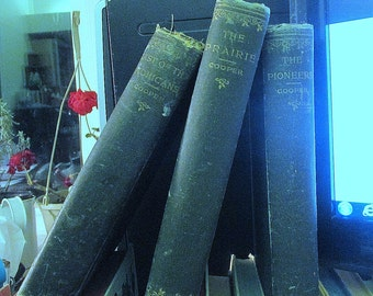 Antique James Fenimore Cooper, Last of the Mohicans, The Prairie, The Pioneers, A.L.Burt