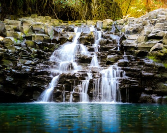 "Hawaii Art, Waterfall Photography, Hawaiian Print, Maui, Twin Falls, Road to Hana, Blue, Green, Wall Decor, Hawaii Wall Decor - ""Wailele"""