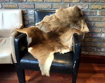 Ethical Eco German Roe Deer Pelt Skin Fur