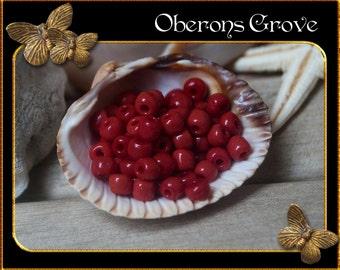 20g crimson red opaque Rocailles 3,6 x4mm