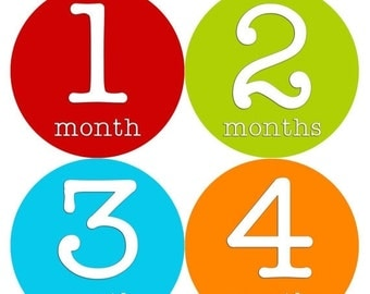 Monthly Stickers Monthly Baby Stickers Baby Month Milestone Stickers Baby Month Stickers Month to Month Bodysuit Stickers Shower Gift 255
