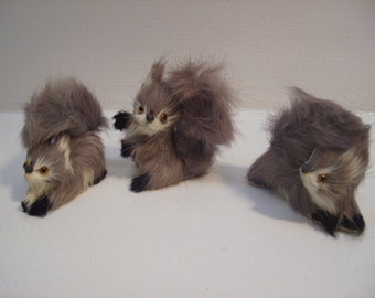 GRAY SQUIRRELS 3 Pc Set