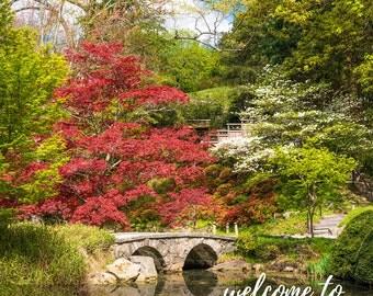 Maymont Japanese Garden Bridge - Richmond VA