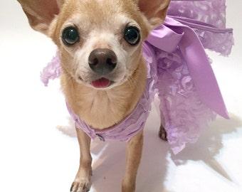 ON SALE Lilac Dog Dress