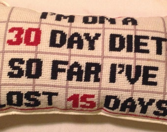 """Needlepoint Decorative Pillow """"I'm on a 30 day diet"""""""""""