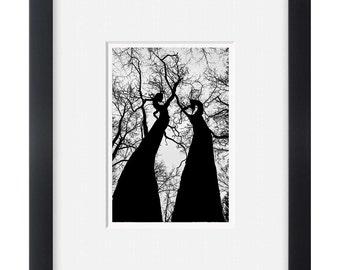 Ttree black and white photography art print, photo print, tree poster