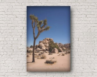 Joshua Tree Photography, Mojave Desert Photo, Coachella Valley Nature, Joshua Tree National Park, California Desert Landscape, Big Rock Art