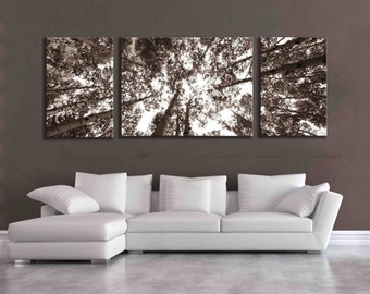 Large sepia three panel multi piece aspen birch tree nature home decor over the couch wall art mountain modern wild forest unique canvas