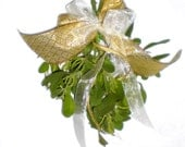 Fresh Mistletoe bunch,Wild Texas Mistletoe gathered and tied with sparkling golden ribbon,Organic Mistletoe,Real Mistletoe,Kissing ball