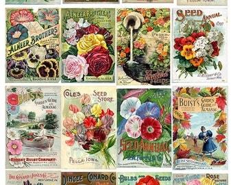 Vintage Seed Catalog, Vintage Flower Art, Flower Seeds, Flower Art Print, Flower Poster, Gardeners Gift, Retro Art, Gardening, Colorful Art