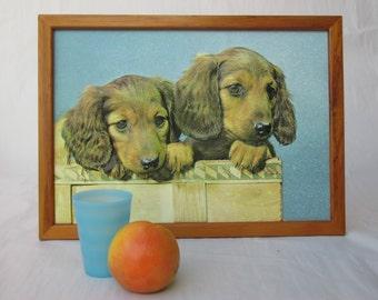 Vintage 3D ChildrensPuppy Print Framed