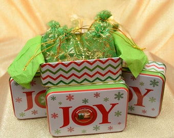 HOLIDAY JOY TIN* (4) Maine Balsam Sachets* Holiday Home Fragrance* Smellabrate Holiday Balsam!*