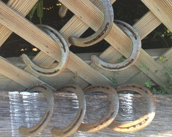 Used Horse Shoes