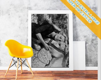 Brigitte Bardot Donkey - Classic Print Poster Rolled Wall Art Print POster Rolled - French former actress, singer and fashion  Photo