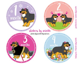 Month by Month Baby Stickers - Australian Shepherd Theme