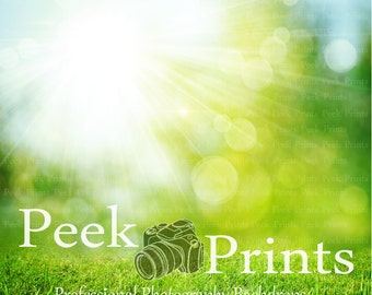 3ft.x3ft. Sunny Grass Vinyl  Photography Backdrop