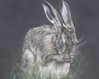 Hare Art - May Dew - direct from artist studio