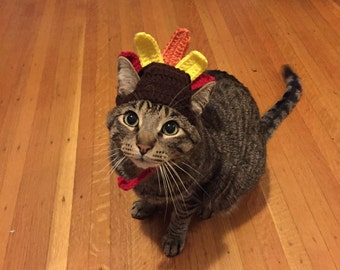 Turkey Cat Costume - Thanksgiving