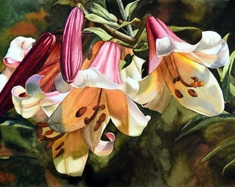 Lilium Regale, Giclee Art Print, limited edition, watercolor flower, watercolor lilies, esperoart.