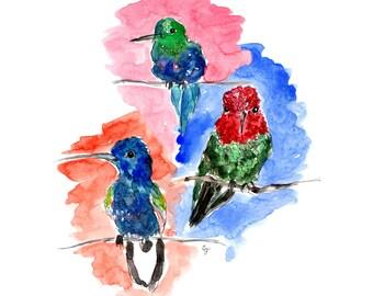 Humming Birds, Watercolor Print 8x10, 11x14