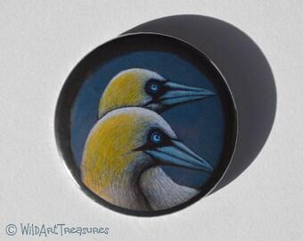 Bird Compact Mirror, Gannet Purse Mirror, Gift
