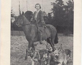 "A Handful Of Alsatians/German Shepherds/1937 Dog Print/8"" X 10.5"""