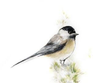 Chickadee Watercolor Painting Art Print, Bird Watercolour Wall Art, Grey Bird Painting