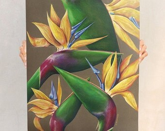 Birds of Paradise Canvas Art