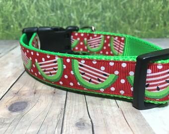 "The Gladys | Designer 1"" Width Dog Collar | CupcakePups Collars | Summer | Watermelons - Medium/Large Dog Collar"