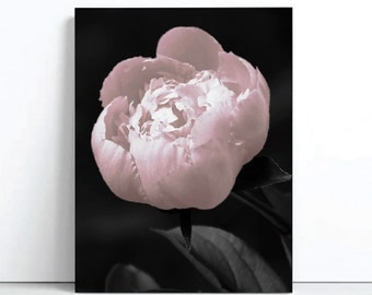 Blush Pink Peony Print like the block Scandi Print Poster Flower Print the Block Unframed Print Poster Art Canvas - Scandinavian art