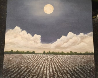 Moonlit Cotton Field