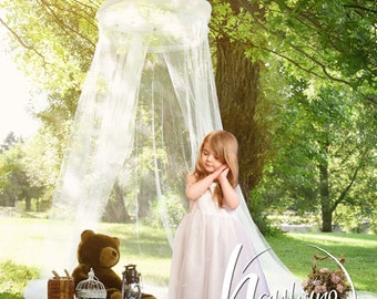Baby Toddler Child White Lace Hanging Canopy in Park Outside for Girl's Portrait Digital Backdrop - Photography Background