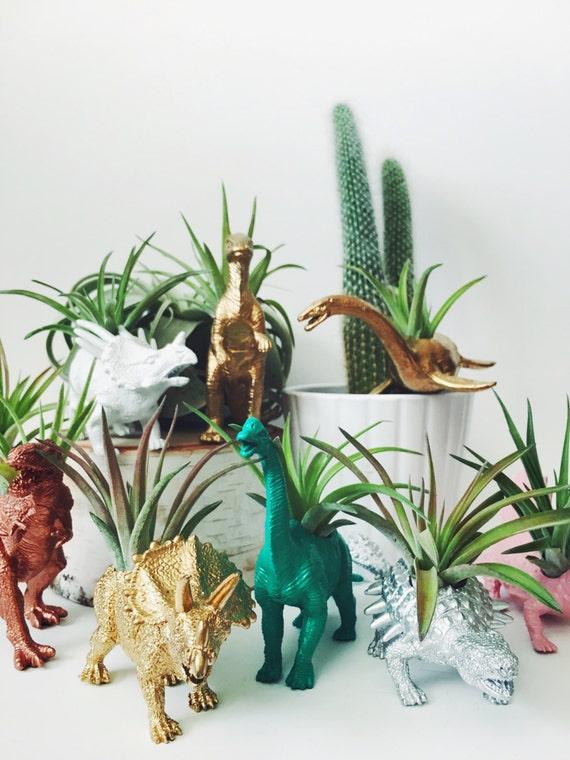 Customize Your Own Dinosaur Planter with Air Plant; Home Decor; Desk Accessory; Office Planter; Unique Gift Idea; Planter; D