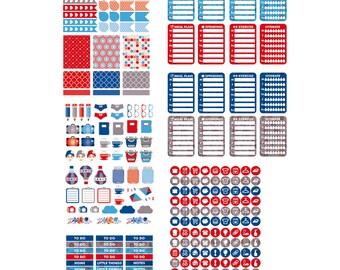 PREPPY 241 functional stickers, floral planner stickers kit, set full box, daily chore header checklist eclp filofax happy planner kikkik