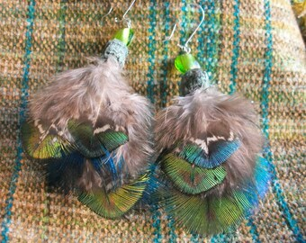 Feather earrings peacock feathers, green blue Brown, spring cleaning, Earth natural forest, Bohemian, boho, hippie, tribal, ooak, also as clip-on earrings