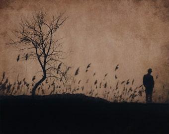 Solitude. Bronze Award in Single Image Contest 2011,COLOR Magazine ,USA