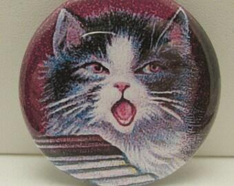 Singing Cat Pocket Mirror, Pocket Mirror, Purse Mirror, Glass Mirror, Mirror, Cosmetic Mirror, Compact Mirror, Vintage Cat, Edwardian Cat