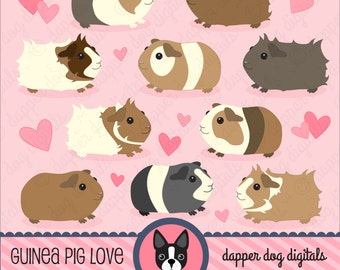 Guinea Pig Clipart Set - Commercial Use, Vector Images, Digital Clip  Art, Digital Images