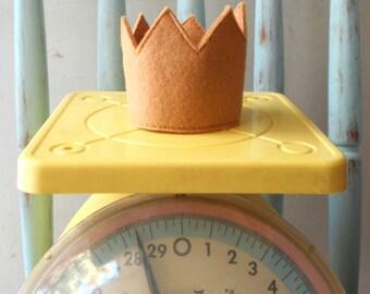 Mini Where the Wild Things Are Felt Crown- newborn photo shoot prop