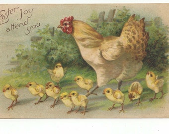 1908 Mother Hen and Chicks Easter Postcard